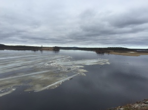 Ice on lake nearly all melted - you might be able to see some swans standing on it