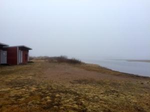 Misty morning in Vitangi