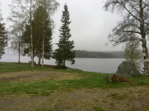 Misty and damp morning at Snibbens campsite