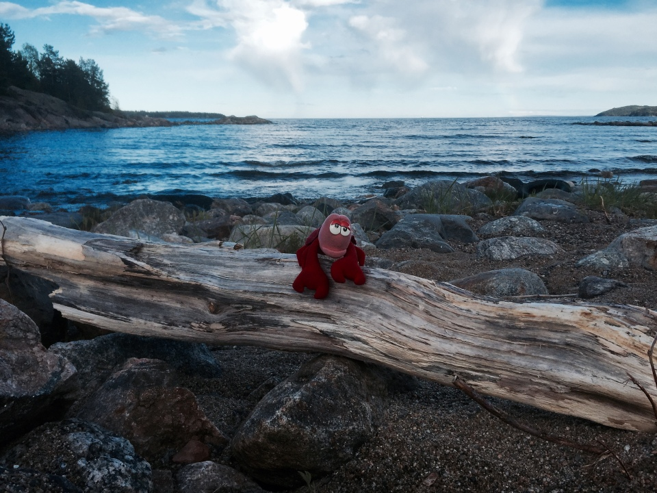 Lobster on a log, getting back to his seaside roots