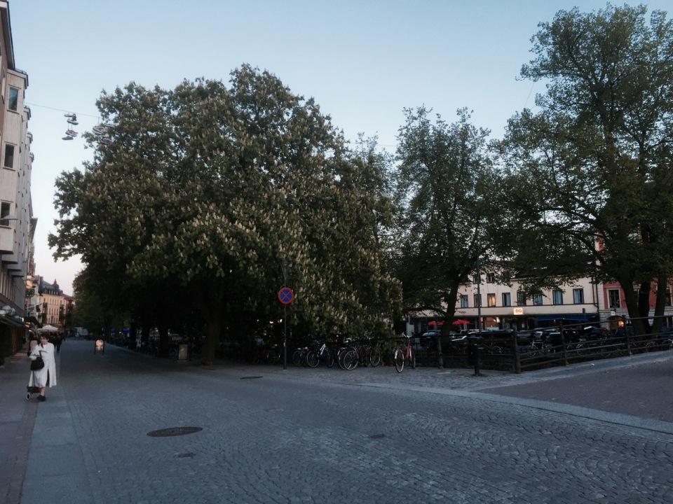 Uppsala centre
