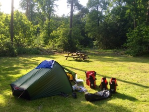 Campsite near Ommen, nice spot in the woods