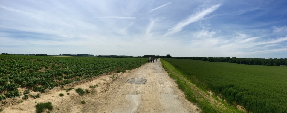 Waterloo battlefield - mostly potatoes now