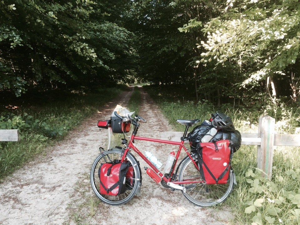 Stopping for a break in Foret de Compiegne