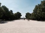 Tuileries Garden 2