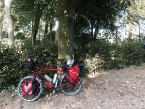 Camping Bois du Bologne