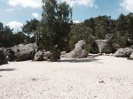 Elephant bouldering area 3