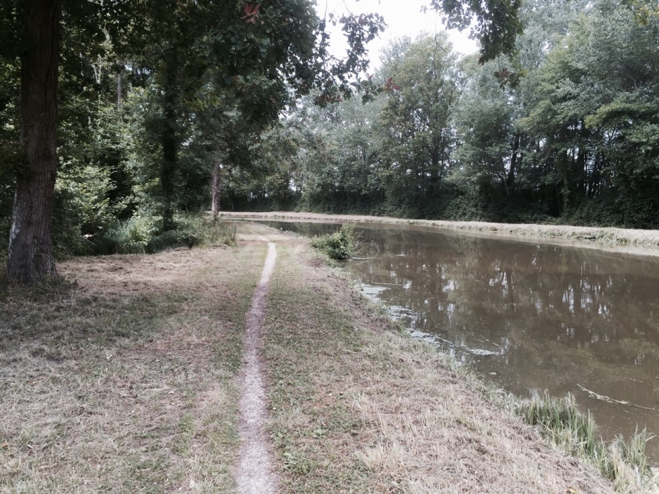 Canal path 2 - getting narrower