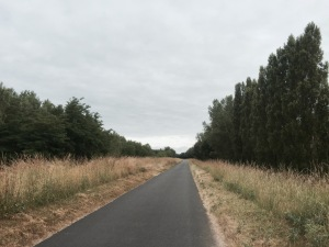 Good cycle paths on Loire à Vélo route