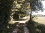 Cycle path alongside Charente