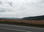 Lots of fields of corn on road to Pamplona