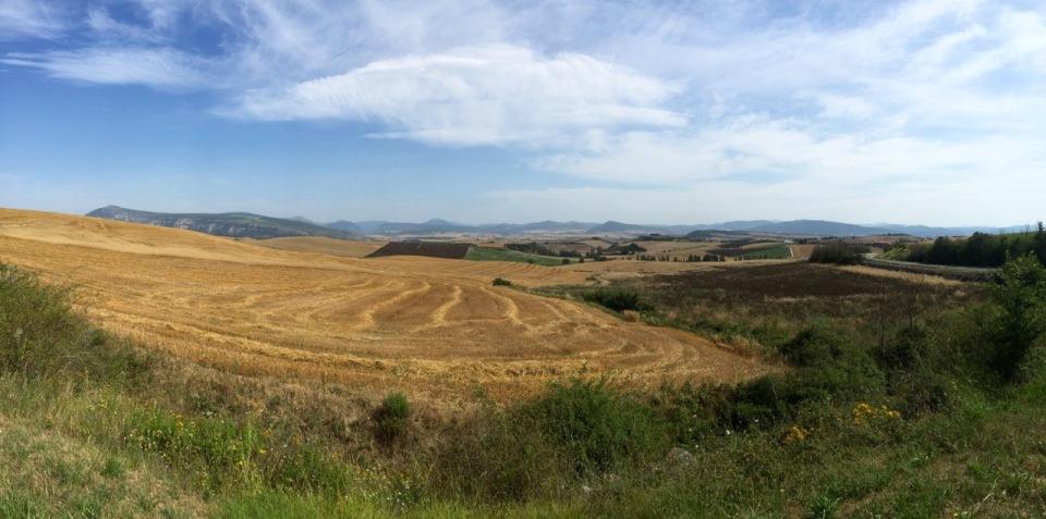 Riding through more corn fields on way to Logrono