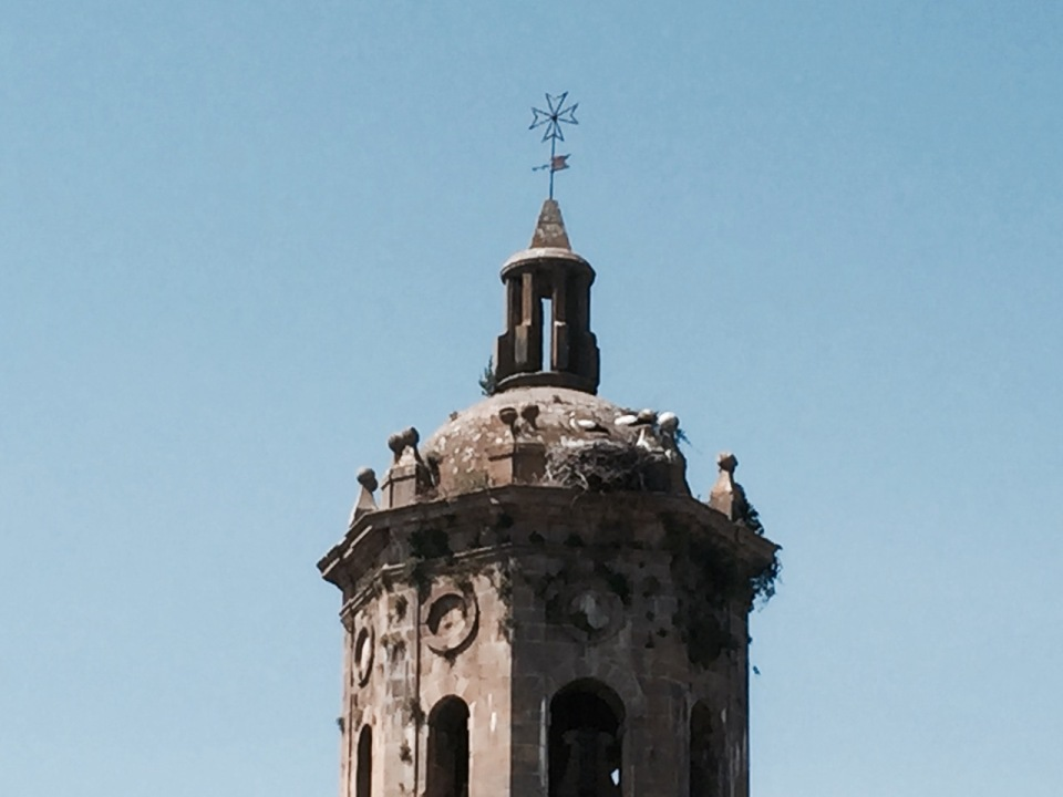 Church in Puente la Reina, with storks 2