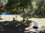 Nice shady campsite - El Eden