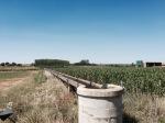 Lots of irrigation channels feeding the fields