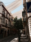 Seville shaded street - genius and very eye-catching
