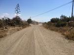 Dirt track on the way to Mazarron
