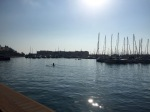 Morning rowers out in Alicante harbour