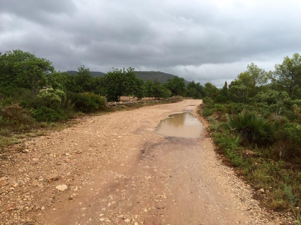 Bumpy trail in Parque Natural Sierra De Irta