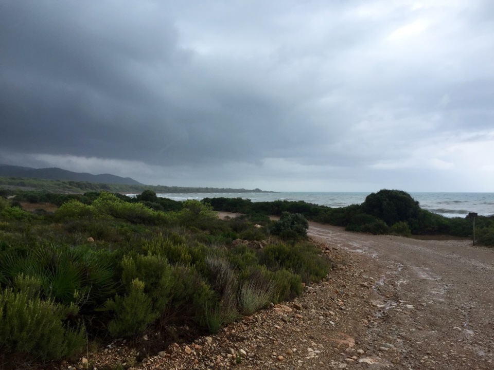 Trail runs close to the sea, light drizzle keeping things cool