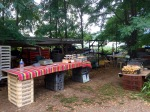 Setting up for open farm day and market