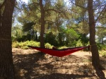 Hammock successfully erected