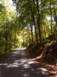 Although still the odd uphill section on narrow, cosy roads