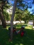 Break in a shady park, Makarska