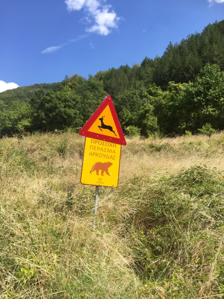 Bear warning sign; wild camping could be risky