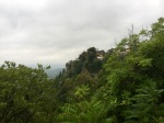 Everything very green, and wet, in Edessa
