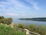 Danube near Vidin - another sunny day