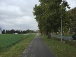 Bit of cycle path provides welcome relief from traffic