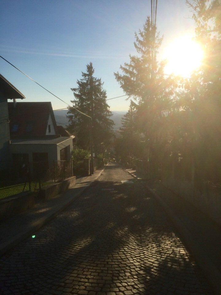 25% downhill slope, with cobbles, fun...