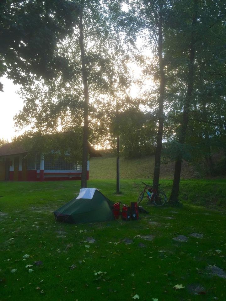 Morning in Au an der Donau; everything so much greener than a week ago