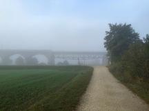 Bridges loom in the early morning fog