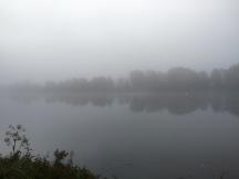 Fog on the Danube; orange buoy adds colour