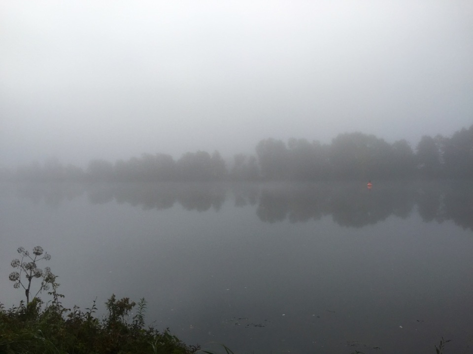 Fog on the Danube; orange buoy adds colour
