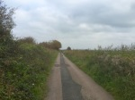 The old Marsh Road towards Bexhill