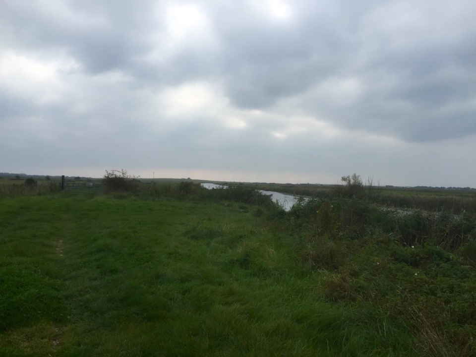 The Marshes - used to row on that river