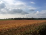 Farmers fields with autumn colours