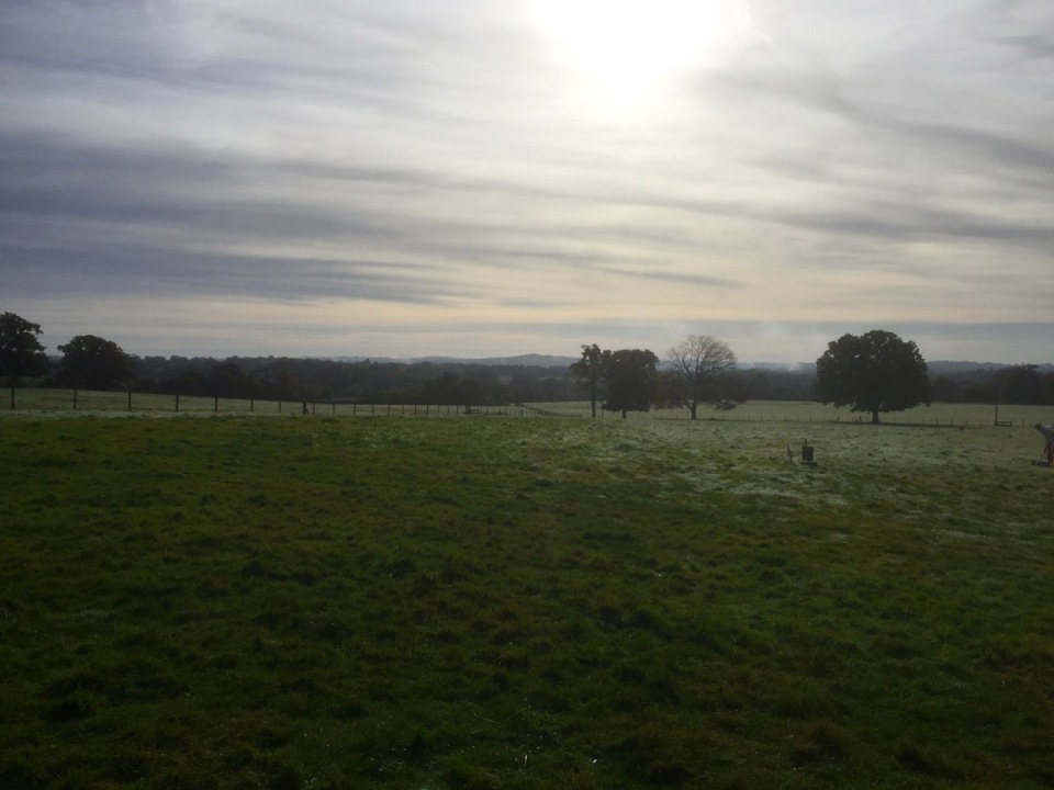 Morning view across Surrey countryside from Yestival