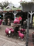 Why anyone thought pink sheep statues were a good idea I don't know, crazy Germans