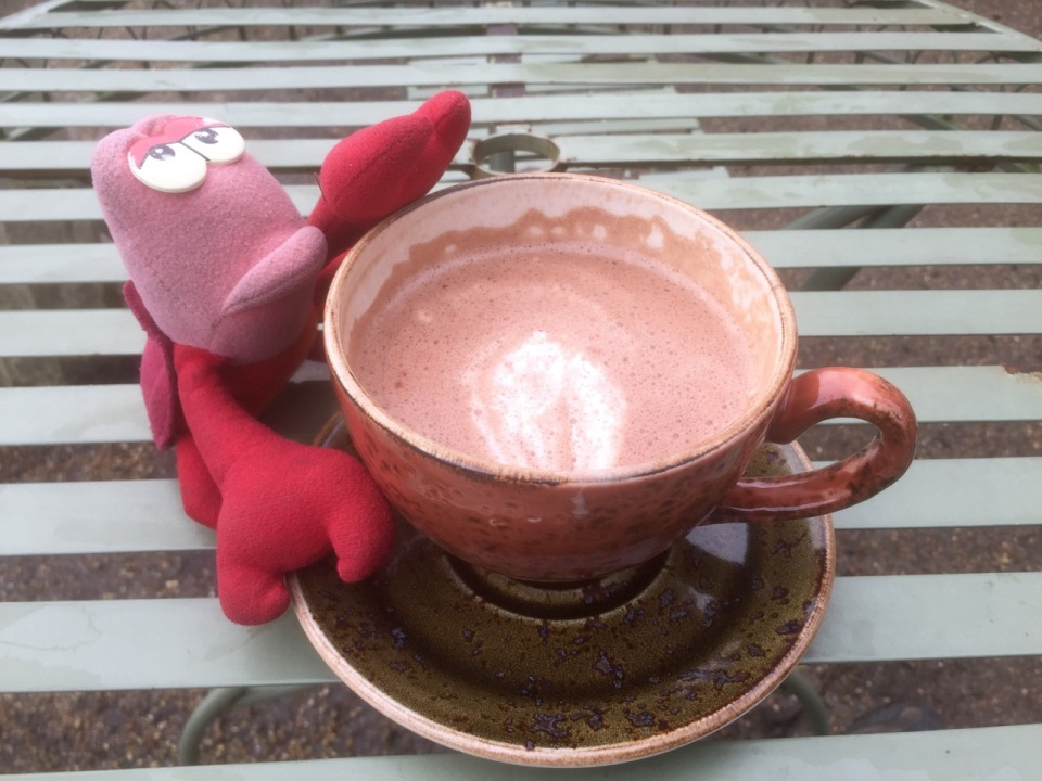 Lobster with his favourite beverage - chocolat chaud