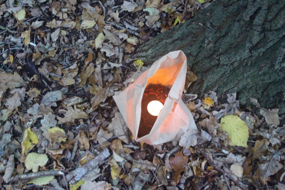 Tea light lead a trail through the woods