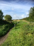 Icknield Way 2 - getting bumpier