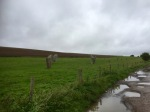 Road to Avebury - avenue of standing stones