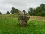 Avebury - nobbly stone