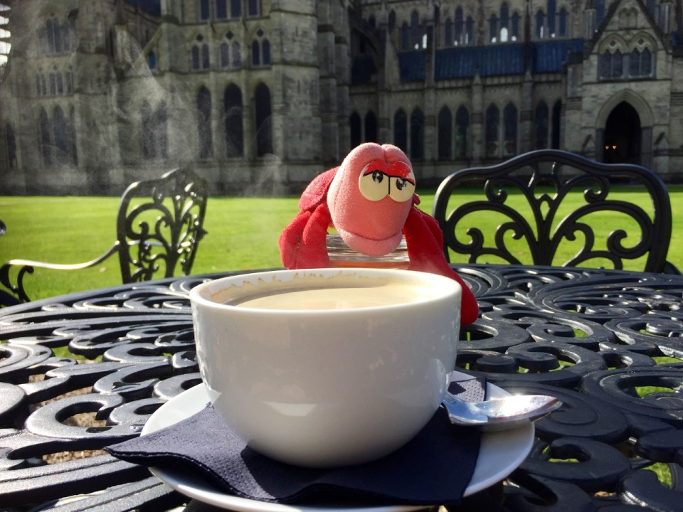 Coffee break - Travelling Lobster disappointed at lack of cake