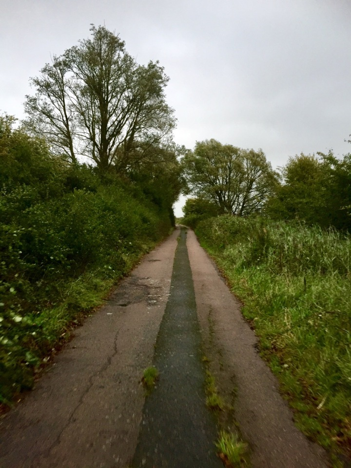 Old Marsh Road towards Bexhill