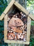 Bee boxes - home for insects